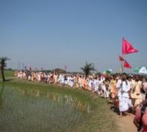 Diez Mil Devotos asistirán al 25 Aniversario del Navadvipa Mandala Parikrama