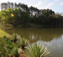 Campamento del Bosque Atlántico da una Divertida experiencia espiritual a los jóvenes Brasileros