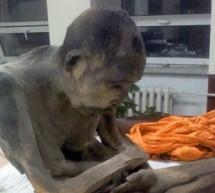 """Hallaron un monje momificado en Mongolia y aseguran que """"está vivo"""""""