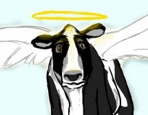 En la tierra de las vacas  sagradas , la furia por la exportación de carne