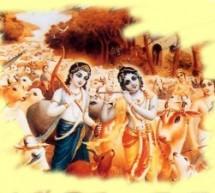 Opinión: Veganismo en la Conciencia de Krishna