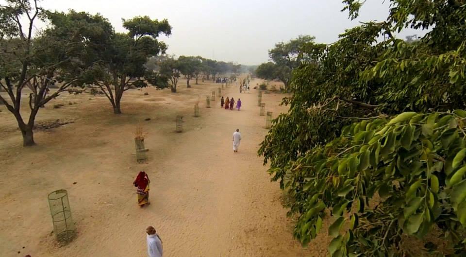 Camino de Parikrama de Govardhana