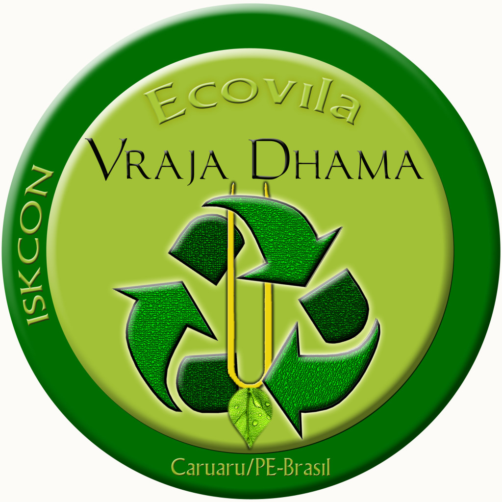 LOGOTIPO ECOVILA FINAL copia